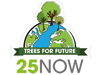 25NOW - Trees for Future